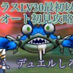 【ドラクエウォーク】ガニラスLV30初見瞬殺&海の漢への道標【ドラゴンクエストウォーク】