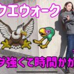 【ドラクエウォーク】新モンスターガルーダ!強くてこまります!無課金ギャル勇者がいく!