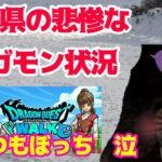 【ドラクエウォーク】雪国青森県の悲惨なメガモン状況!なんとか盛り上げたい 泣
