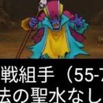 【ドラクエウォーク】超連戦組手を魔法の聖水なしで攻略!踏破率55~75%編【無課金ガチ勢】
