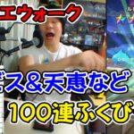【ドラクエウォーク】 ルビス&天恵など 100連 ふくびき【ふくびき】
