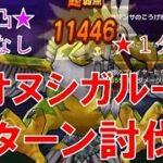 【ドラクエウォーク】オオヌシガルーダ 2ターン討伐 会心なし