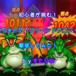 【DQW】グリーンドラゴンLv20を撃破してみた【ドラクエウォーク】