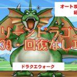 【ドラクエウォーク 】グリーンドラゴンLevel30・回復なし・オート攻略・イオとヒャド固め・装備&こころ&心珠紹介付き【ドラゴンクエストウォーク】