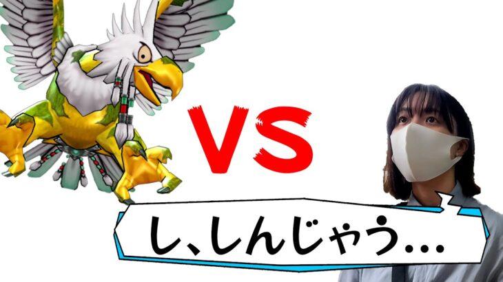 【ドラクエウォーク】女勇者のオオヌシガルーダ初見攻略