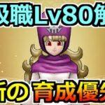 【ドラクエウォーク】上級職レベル80がついに解放!最新のレベル上げ優先度!