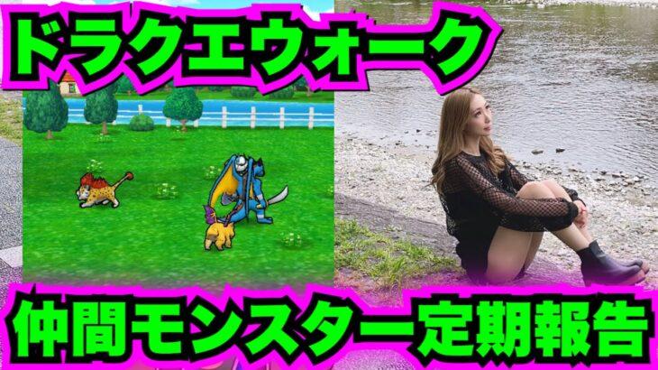 【ドラクエウォーク】仲間モンスター定期報告会!無課金ギャル勇者がいく!